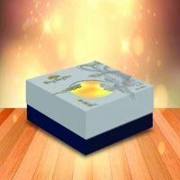 Bánh Trung Thu Cao Cấp Đông Hưng Viên PHỤNG BẠC 4 trứng (600g)