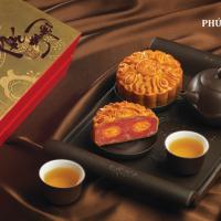 Trà Gừng Hồng Sâm Hàn Quốc Ginger Tea with Red Ginseng